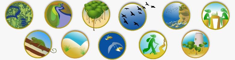 mapa-guía del Parque Natural Breña y Marismas del Barbate