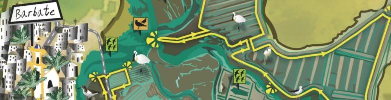 mapa-guía ornitológico de breña y marismas